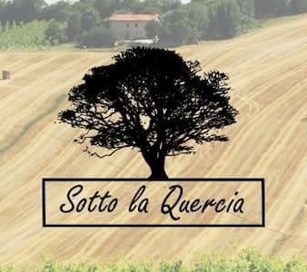 Sotto La Quercia a Ostra prov. Ancona nelle Marche - Ostra - Huoneisto