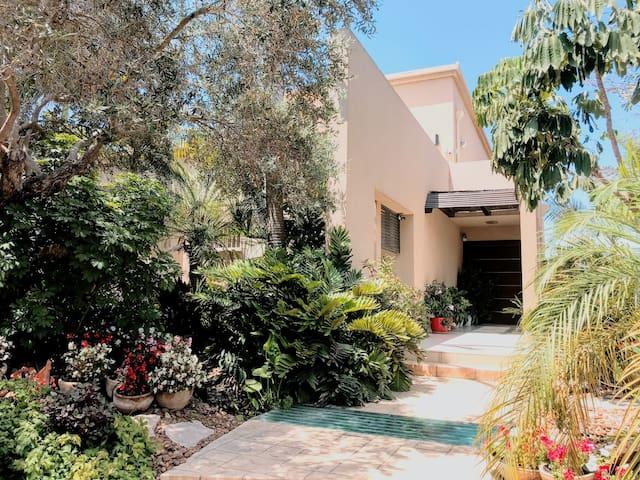 Modern Mediterranean Beach Villa and Garden Oasis