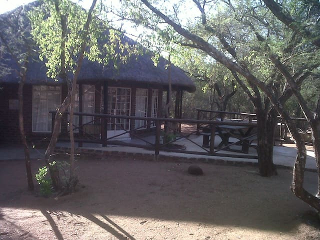 Boshoffshoop Bush House - Marloth Park - Huis