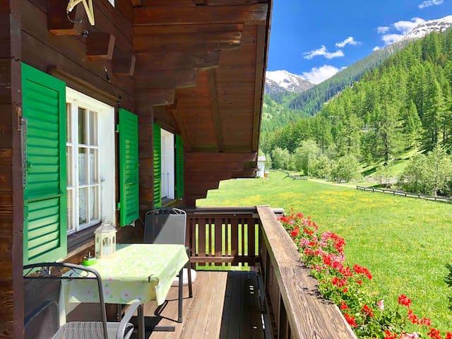Fredy Wohnung Swiss Chalet Obergoms  Balkon Garten