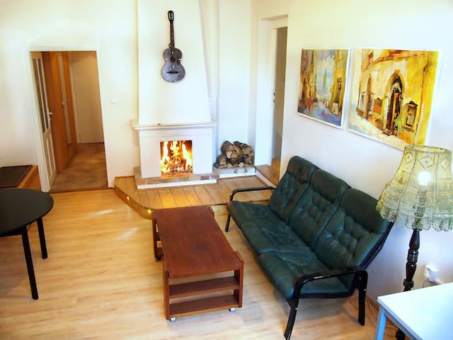 Simple Flat for 3 ps next to the Old Town Sq. - 布拉格 - 公寓