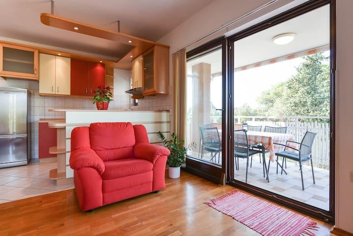 Modern apartment Ivica on Ugljan near the beach - Ugljan - Apartament