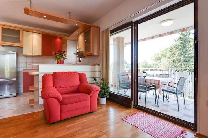 Modern apartment Ivica on Ugljan near the beach