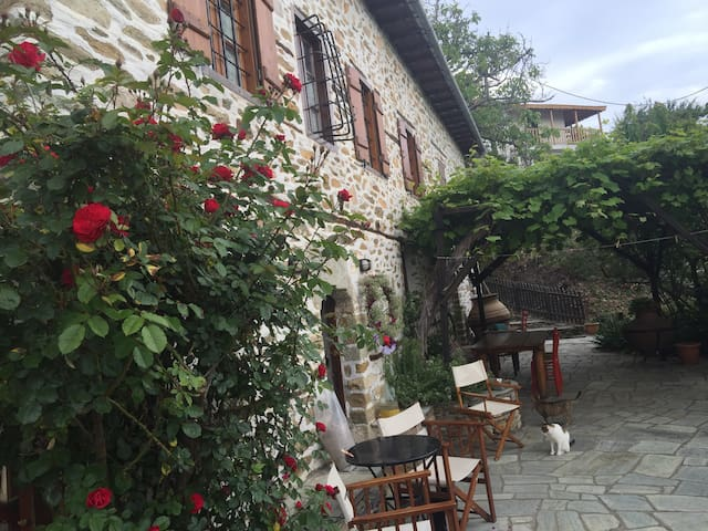 Mountain Sea View Villa - Agios Lavrentios