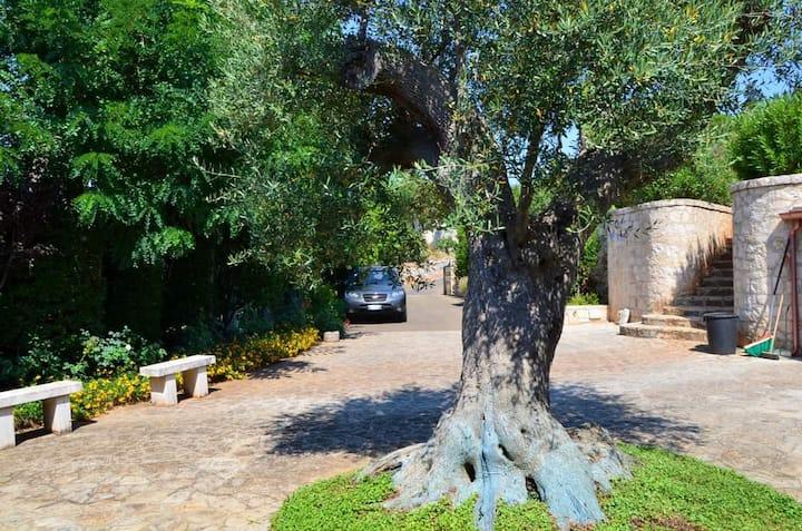 Villa storica con vista a Selva di Fasano