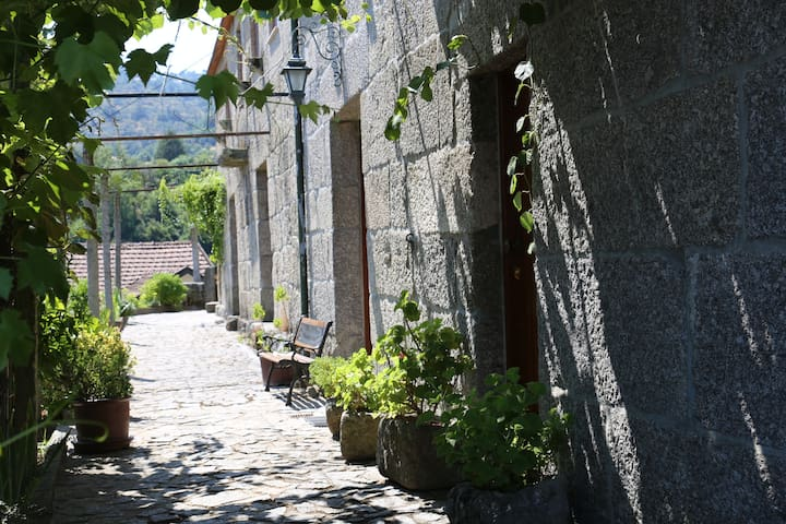 Casa das Castanheiras - Resende - Casa de campo