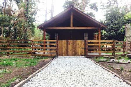 Cálido Monoambiente de 40m2 - Sommerhus/hytte