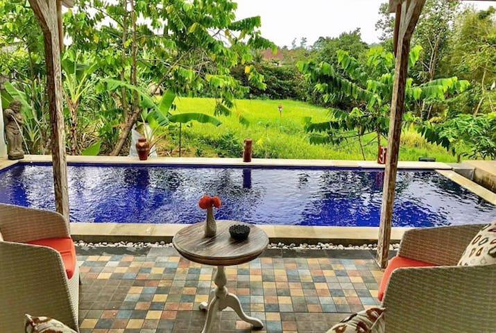 Gorgeous villa living in central Canggu