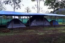 camp shade