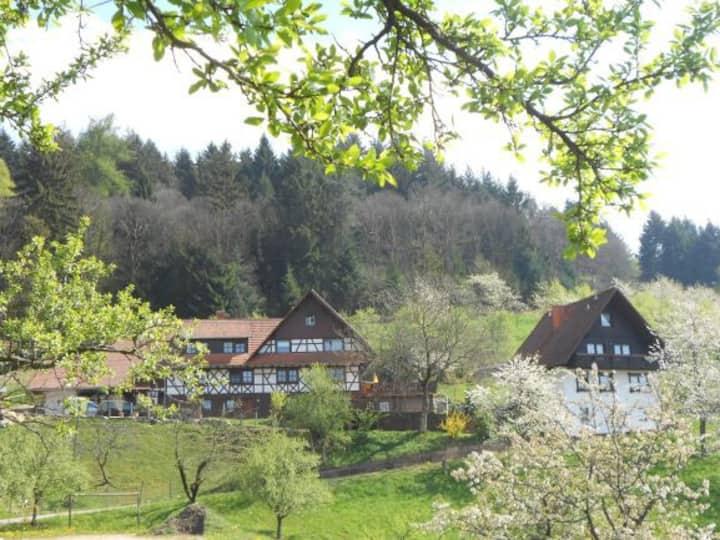 Ferienhof Fischer, (Seebach), Ferienwohnung Apfelblüte , 50qm, 1 Schlafzimmer, max. 4 Personen