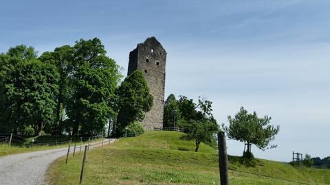 Ferienwohnung Burgblick in Neuravensburg