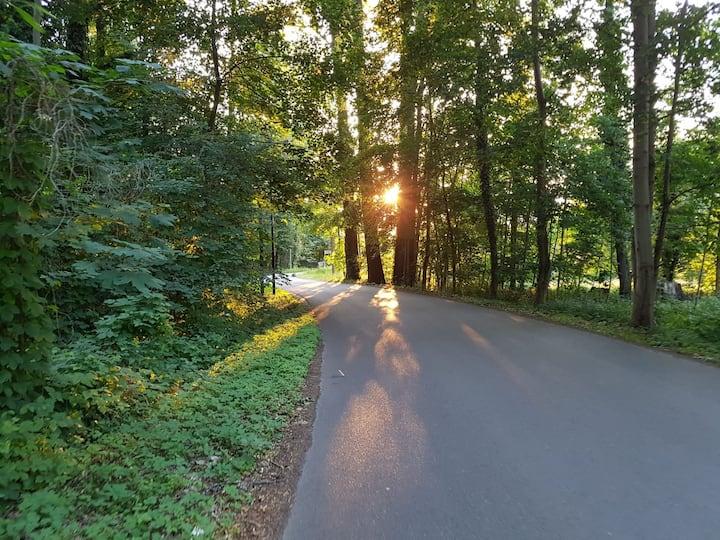 Sonnenuntergang auf dem Weg nach Lehde