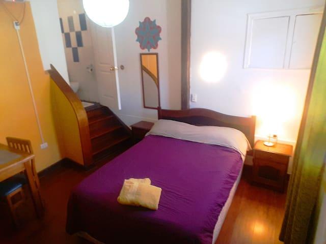 Loft cercano a zona patrimonial - Valparaíso - Leilighet