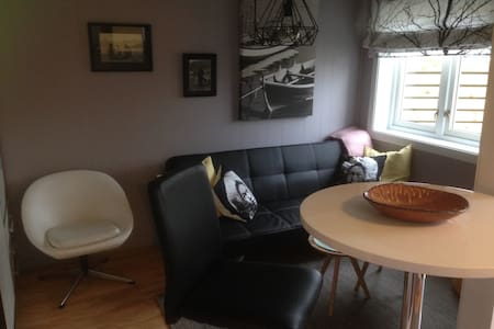 Cosy new apartment, walking distance to everything - Apartment