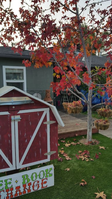 Colorful fall leaves provide shade and beauty while relaxing on the front deck.