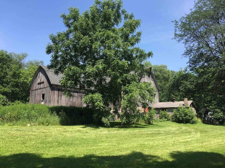 Burlington House:  The Whispering Willows