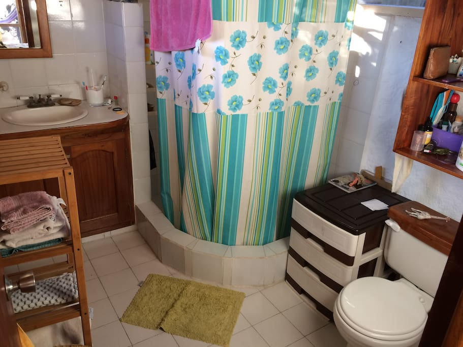 Bathroom with hot water and shelfs.