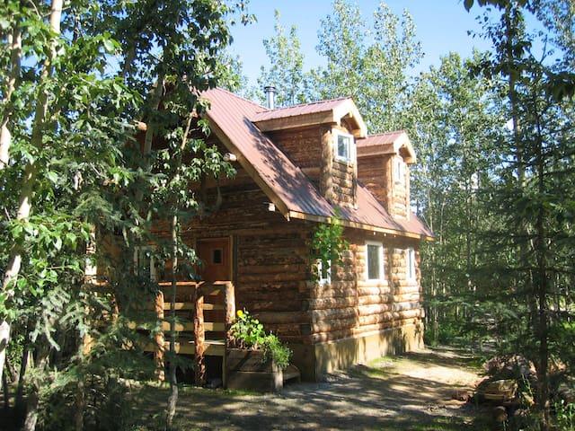 Arctic Getaway B&B - Koyukuk cabin
