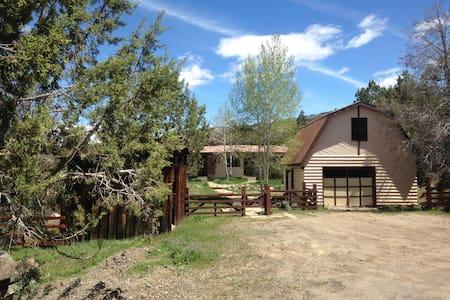 Colorado Mountain Secluded Retreat. - Molina - House