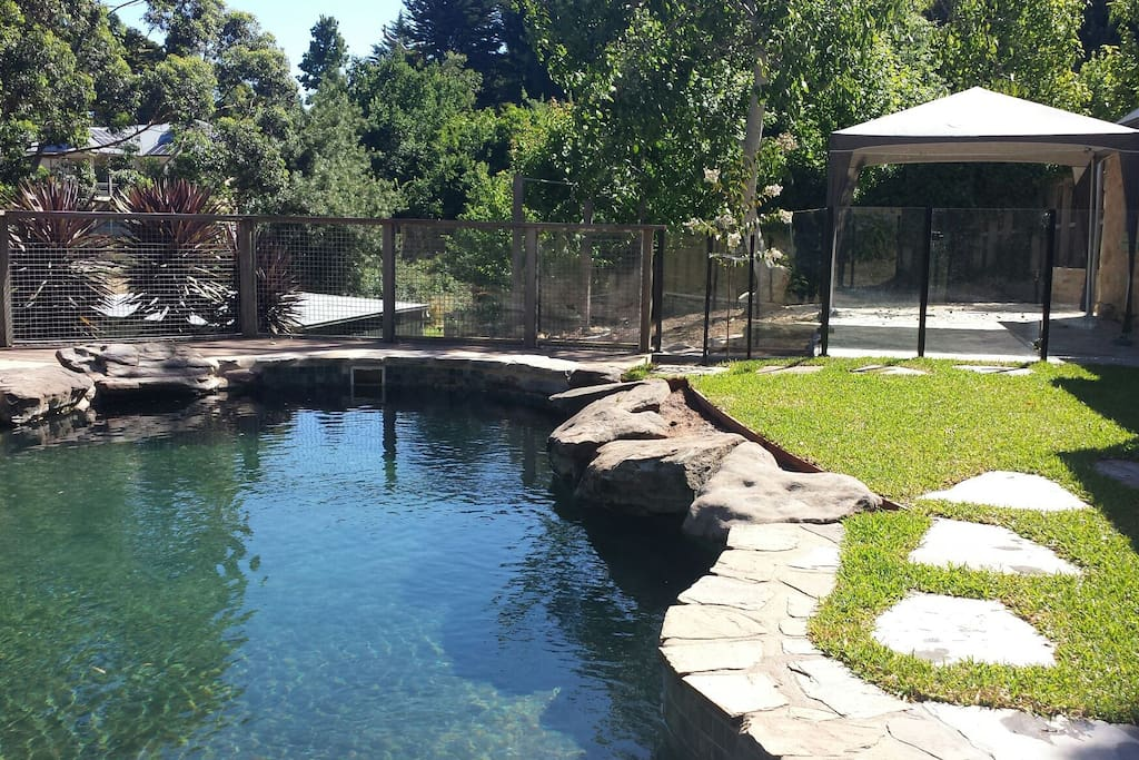 Heartwood pool (fully fenced) and garden beyond