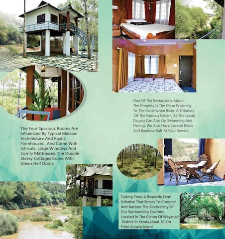 River Valley Huts - Luxury cottages in Panamaram