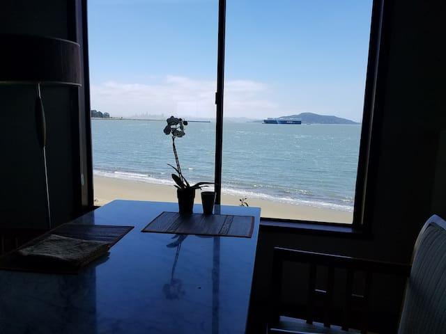 On the Pt Richmond Beach, Boats, Birds, SF View