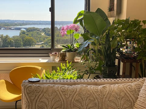 Georgetown Rosslyn cozy studio Potomac View