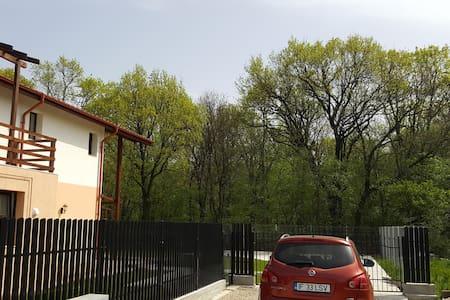 New house, elegant, nice landscape - Ciofliceni