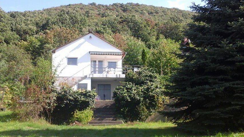 House Hungary,Esztergom near Danube - Esztergom - House
