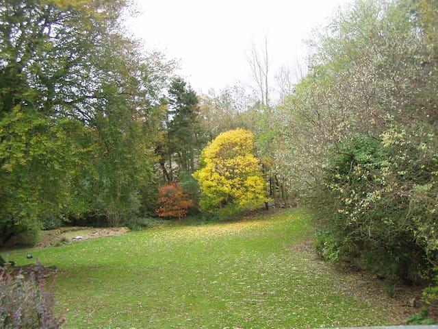 Andrewsford House Garden in the Autumn