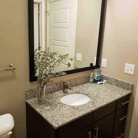 Downtown Upscale Apt. Steps from Innovation Center