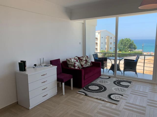 One bedroom apartment 100 meters from the sea