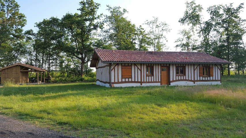 Superbe maison moderne landaise - Solferino - Dom