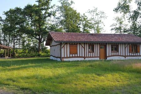 Superbe maison moderne landaise - Solferino