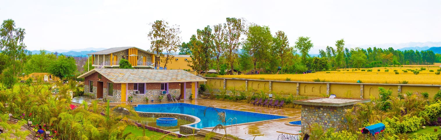 A Stay in the lap of nature in Corbett