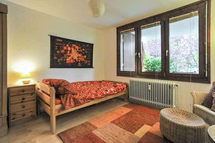 Quiet, comfortable room in Tübingen - Tübingen - Lägenhet