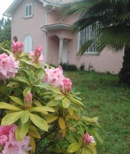 Casa do soito - ambiente familiar e tranquilo - House