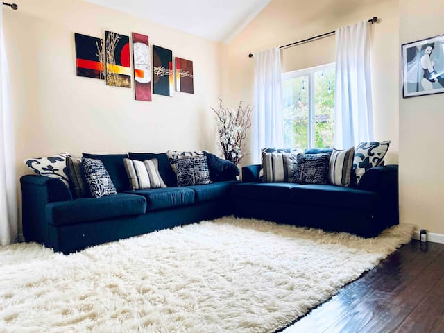 Luxury king bed close to downtown Reno and UNR.