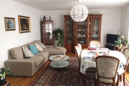 Central 3 room apartment for Baselworld - Binningen