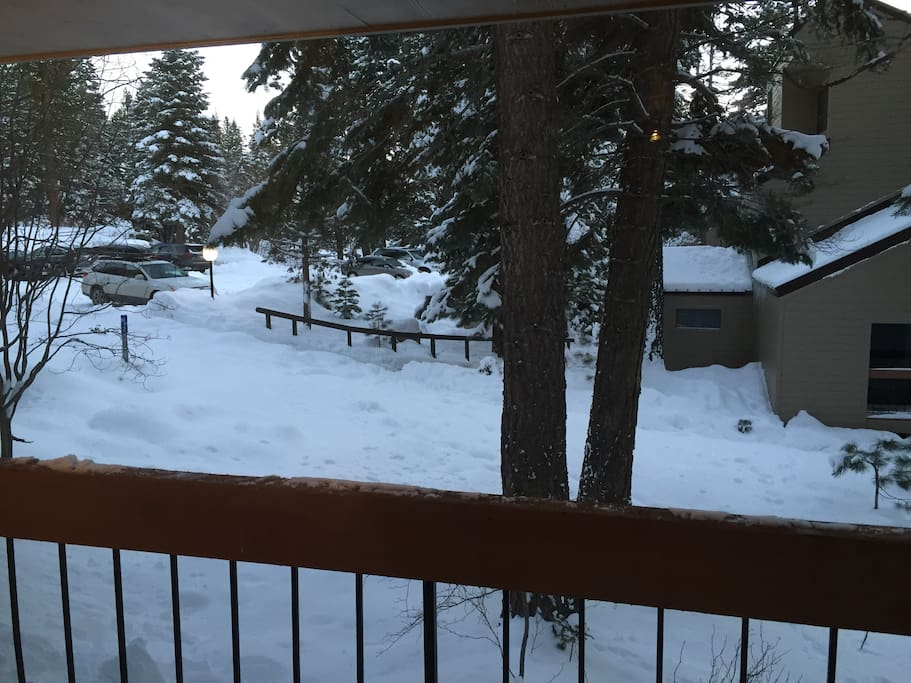 View of the parking from the back deck.