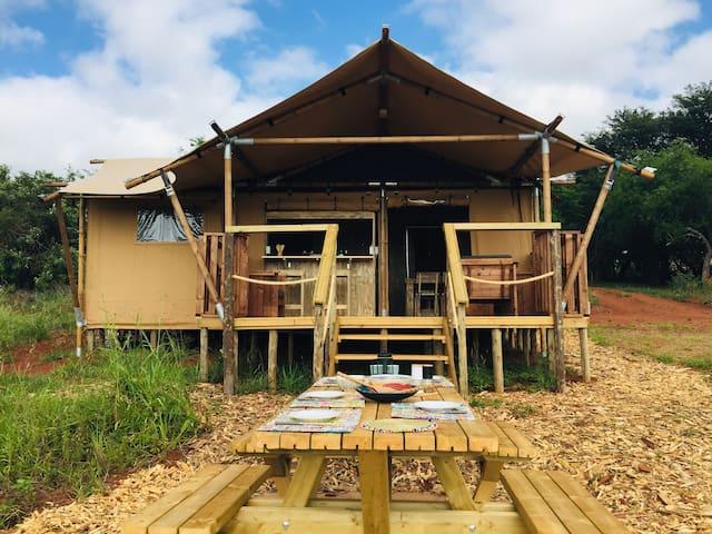 Hluhluwe Bush Camp Luxury Glamping Tent 1