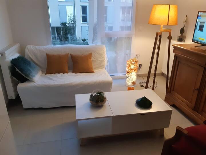 Appartement au calme décoré avec soin
