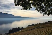 Lake Léman.