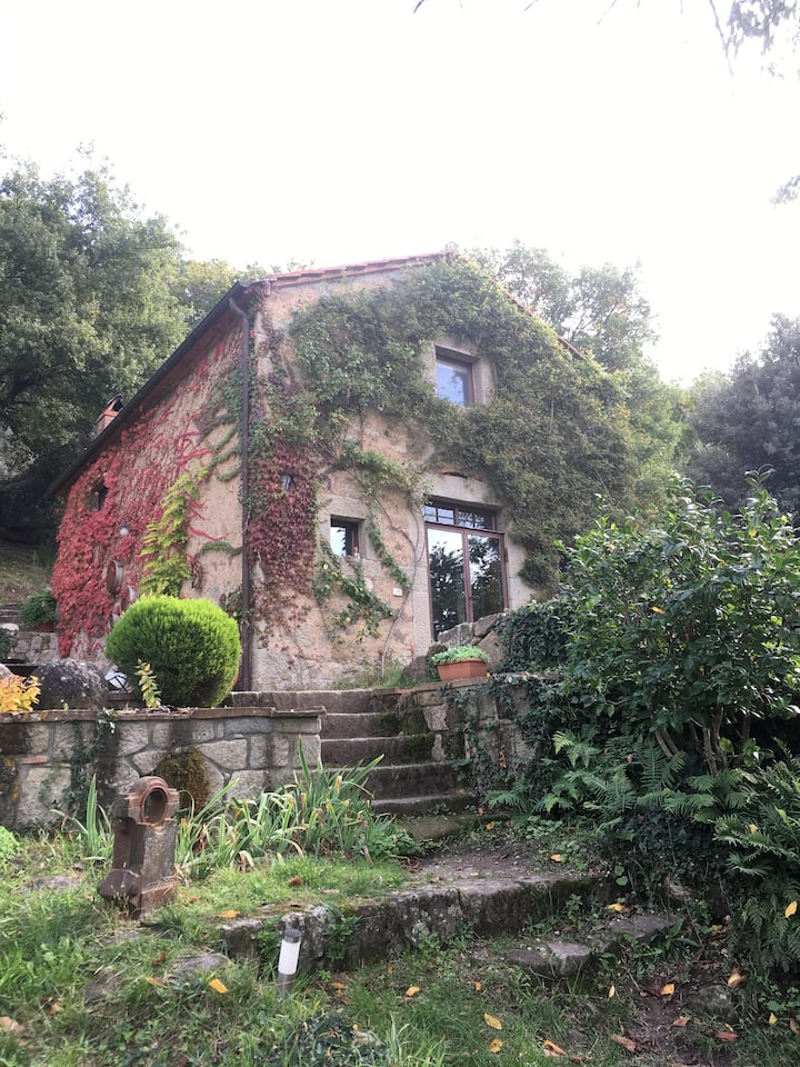 Terra Delle Sidhe, Seggiano, Tuscany