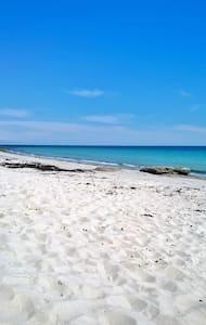 maison a la campagne et proche de la mer ( 2 km ) - Plobannalec-Lesconil