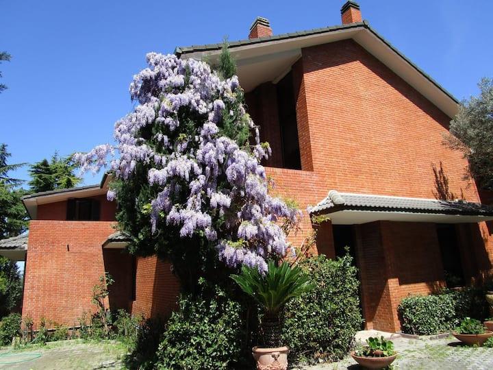 Villa Diadema - camera singola