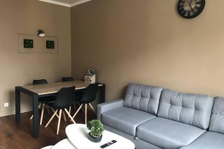 Appartement de charme rénové en centre ville