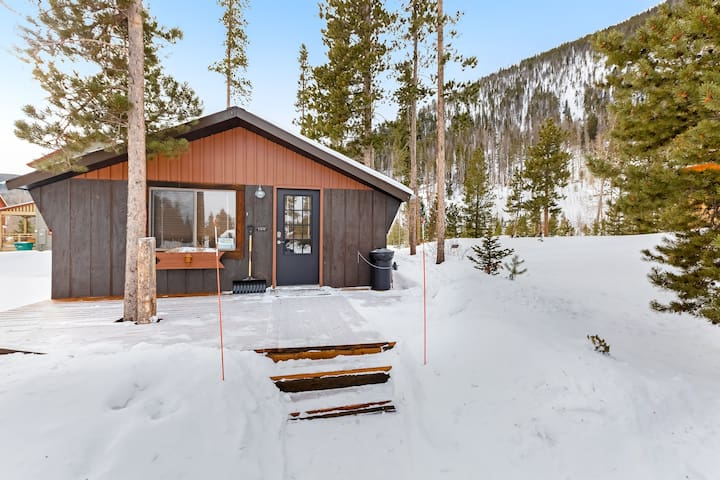 Charming cabin close to downtown, Lake Dillon & skiing - dogs welcome!