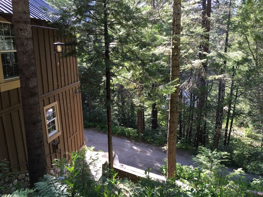 Enjoy the forest view and fresh air from the patio