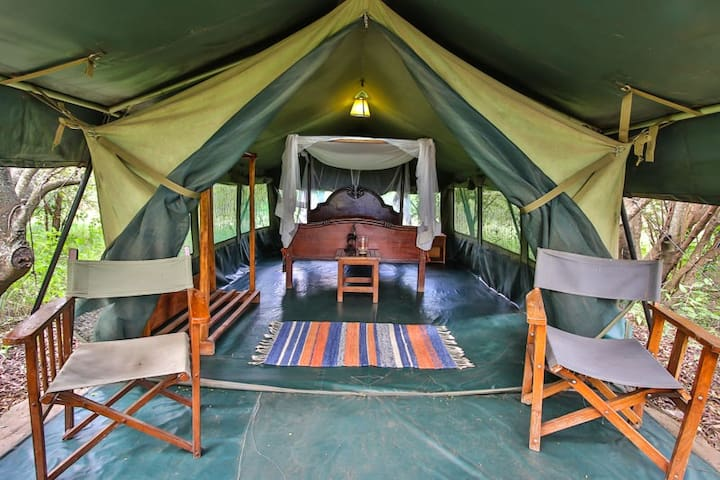 Cozy Aruba  bush tent at Masai Mara / Talek river